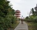 Парк лес ЛинЧунЛин LinChunLin Санья Хайнань Китай 2015